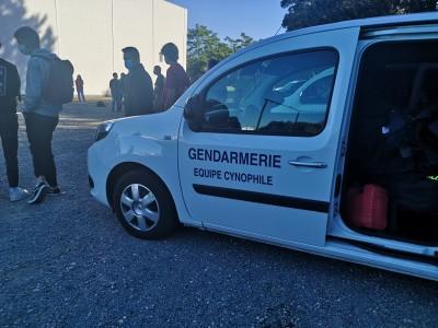 Visite Des équipes Cynophiles De La Région De Gendarmerie De La Nouvelle-Aquitaine