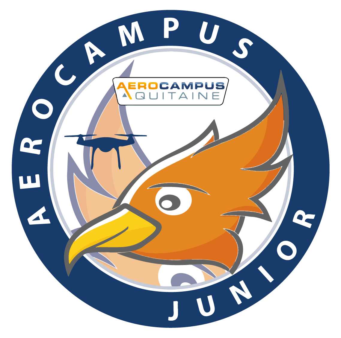 AEROCAMPUS JUNIOR – Séjours Drones : Initiation & Perfectionnement