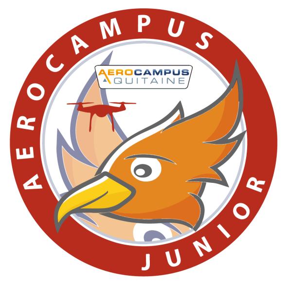 AEROCAMPUS JUNIOR – Séjours Drones : Initiation & Perfectionnement
