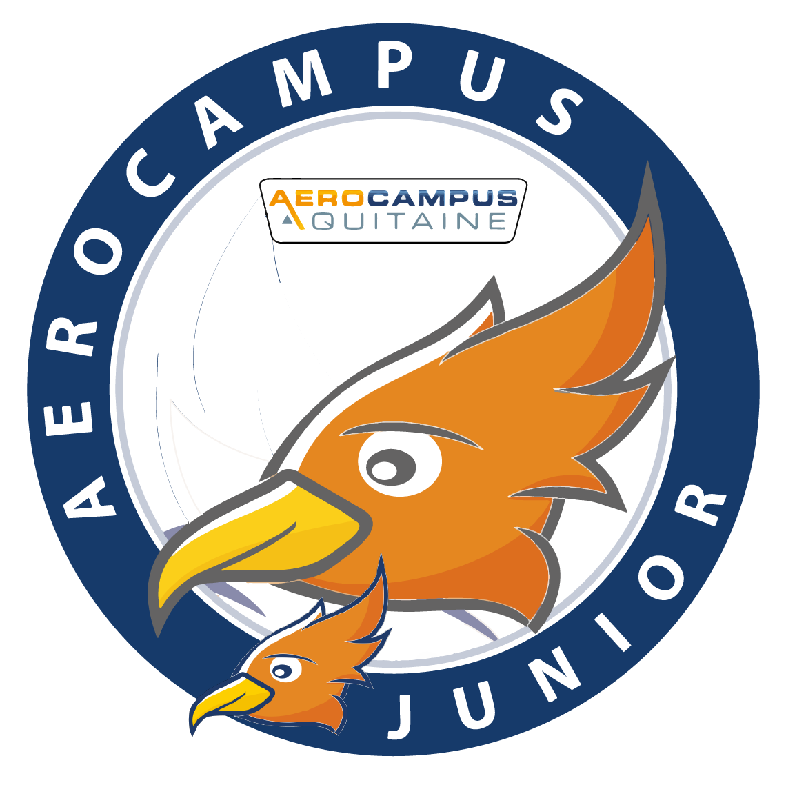 AEROCAMPUS JUNIOR – Tandem : Animation Parents/Enfants