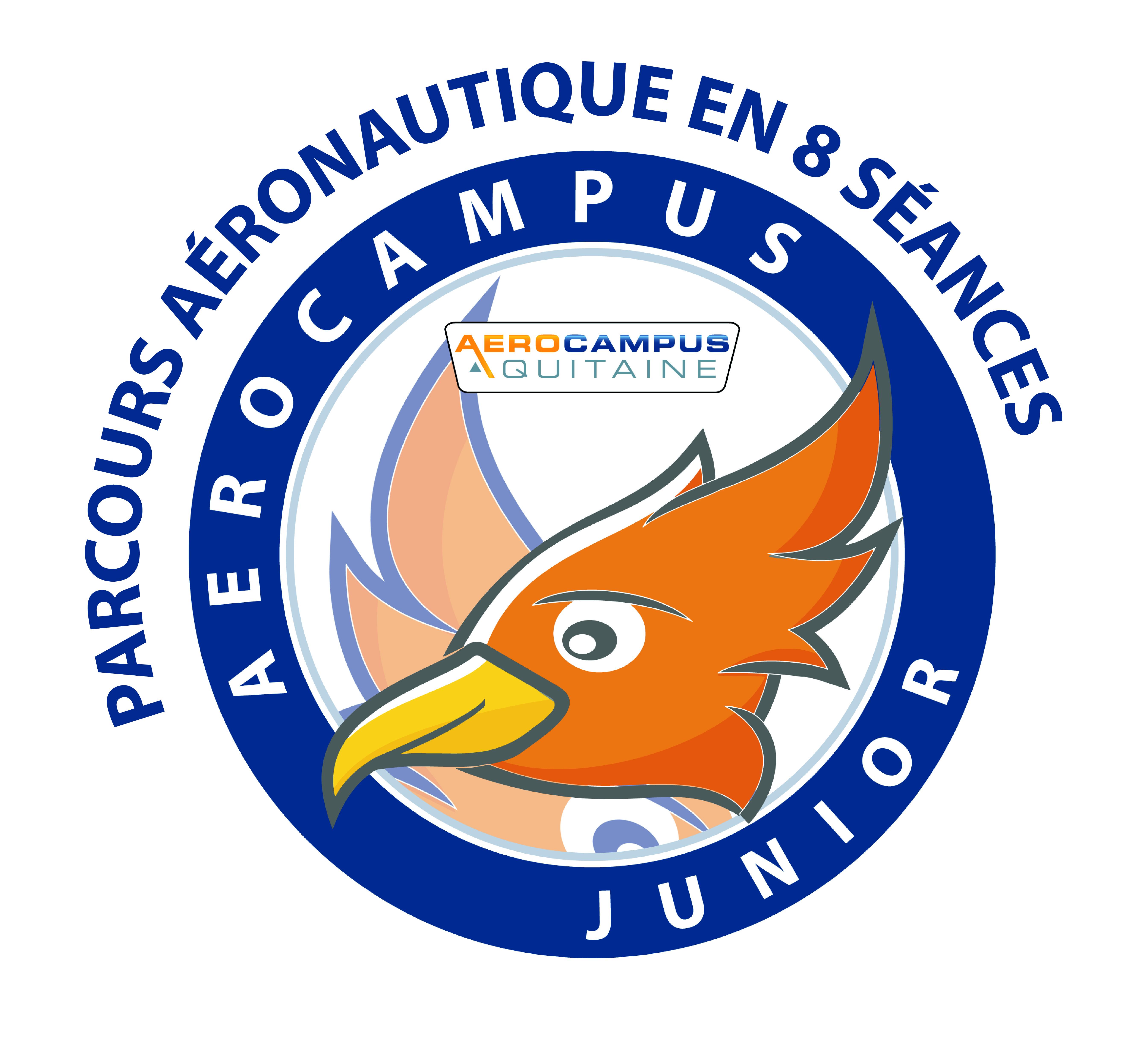 AEROCAMPUS JUNIOR – Parcours Aéro En 8 Séances