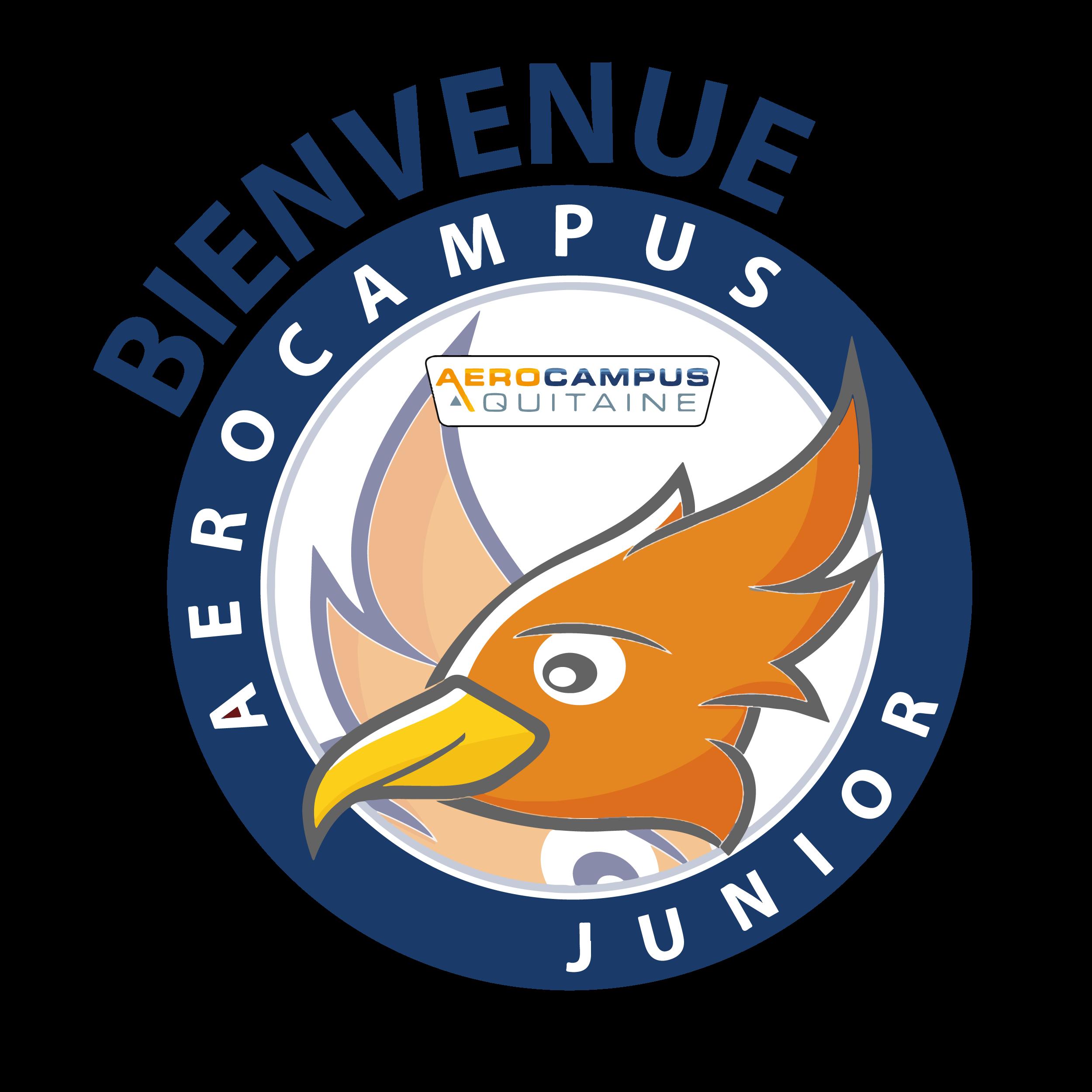 Logo AEROCAMPUS Junior Page Accueil Site Web 01