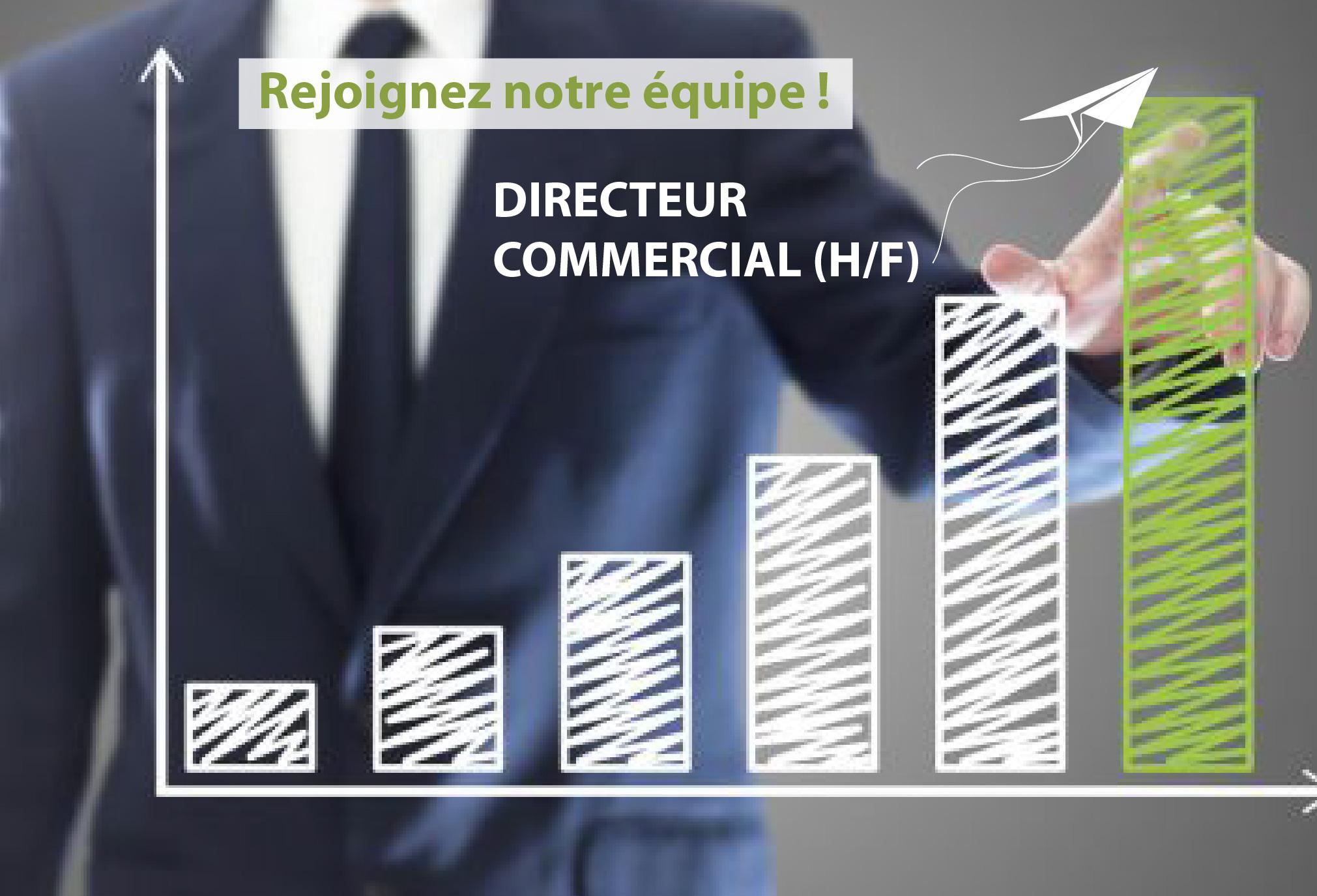 DIRECTEUR COMMERCIAL (H/F)