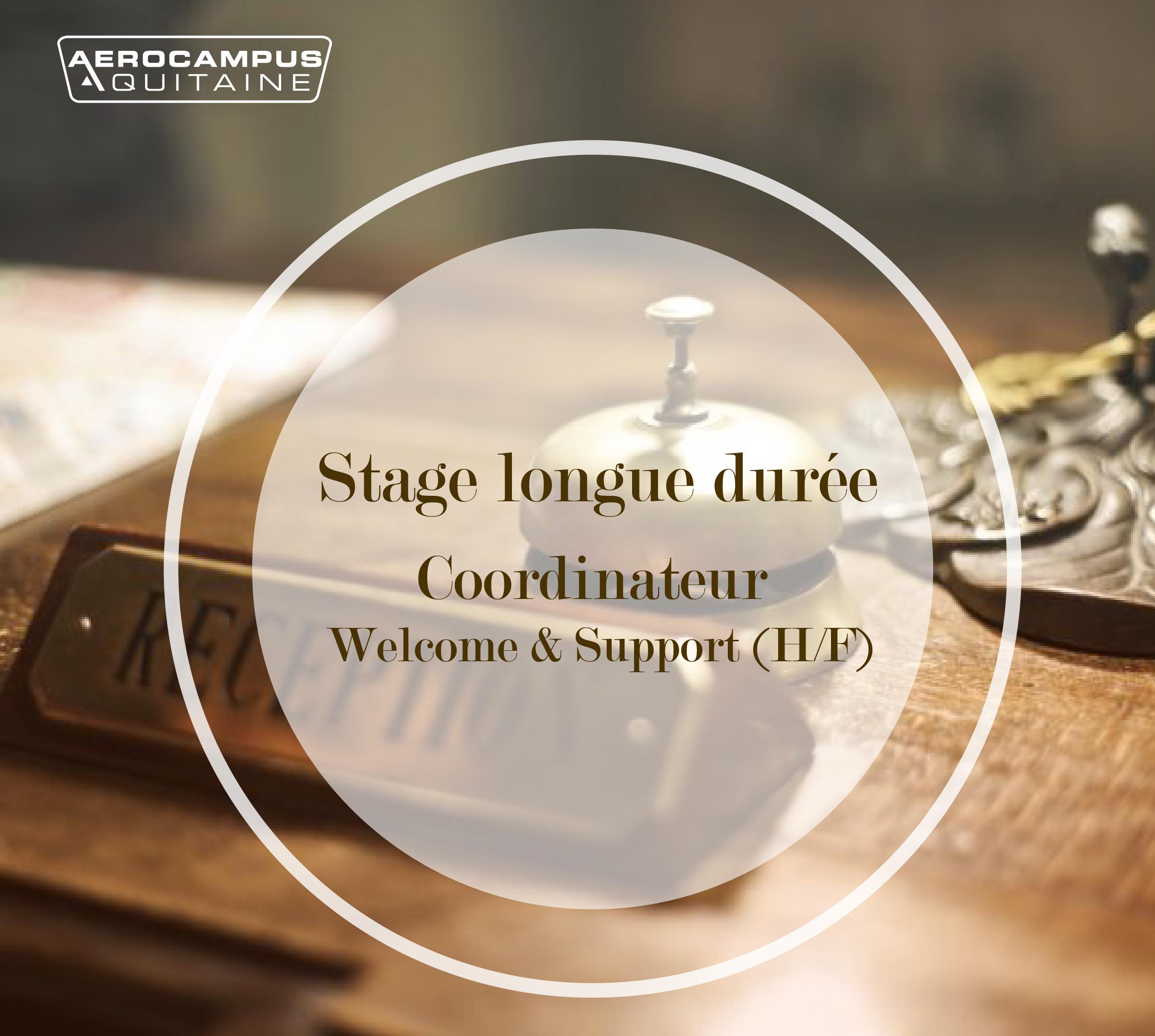 COORDINATEUR WELCOME & SUPPORT (H/F) – STAGE LONGUE DURÉE